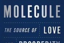Can We Find Morality in a Molecule?