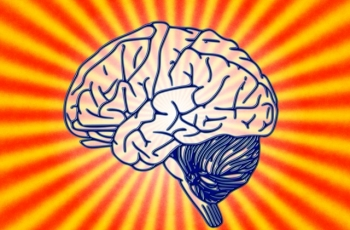 What Can the Brain Reveal about Gratitude?