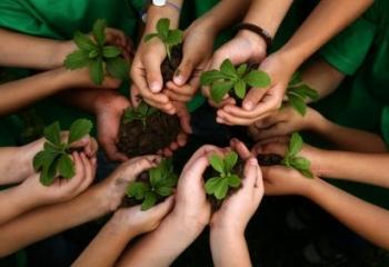"Five Ways to Develop ""Ecoliteracy"""