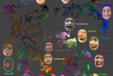 Are Facial Expressions the Same Around the World?
