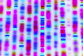 How Genetic Tests Change the Way We See Our Race