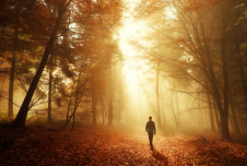 How Mind-Wandering May Be Good For You