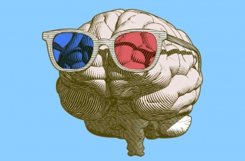 What Political Polarization Looks Like in the Brain