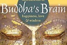 Improving Our Lives from the Inside Out: A Review of Buddha's Brain