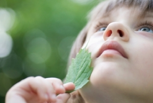 How Nature Can Make You Kinder, Happier, and More Creative