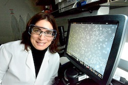Daniela Kaufer in the lab.