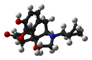 Naltrexone, a medication that inhibits opioids
